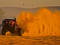 sand buggy big wheelie roost